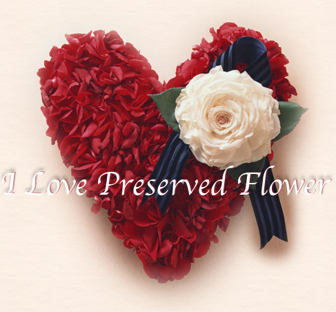 I Love Preserved Flower
